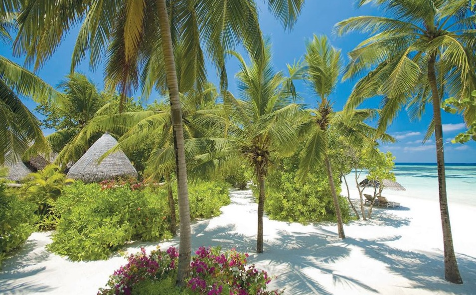 Maldives Resorts List With Contacts Updated 2018